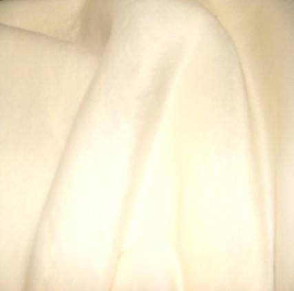 BL179 SNOW WHITE FOX