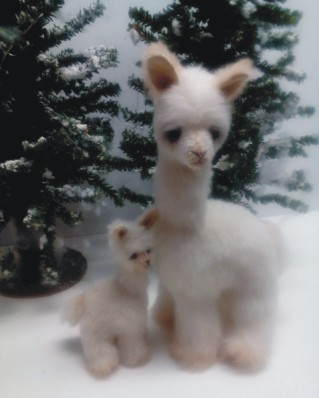 ANNABELLE ALPACA AND BABY GYPSY