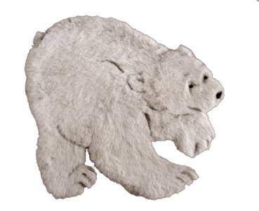 KIMBO POLAR BEAR PATTERN