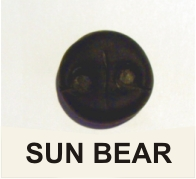 SCULPTURED SUN BEAR NOSE
