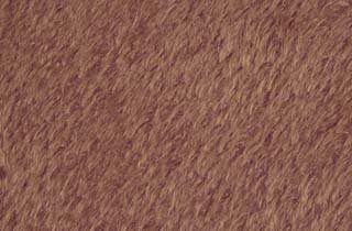 ASpG24 5062 ANTIQUE BROWN