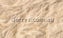 SpCG31 5663 MAPLE DK BACK